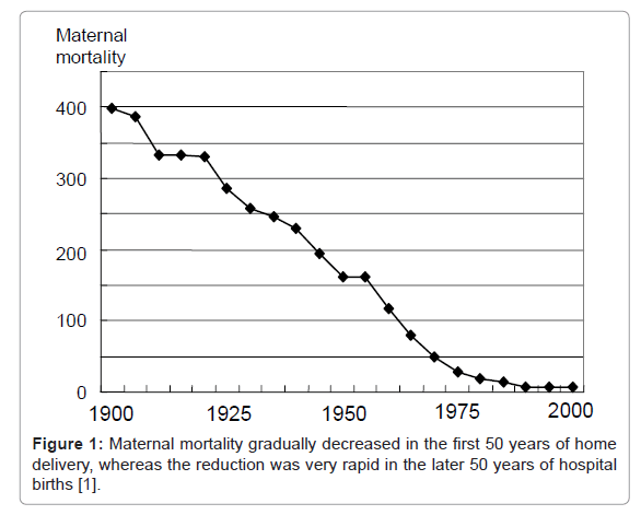 health-medical-informatics-Maternal-mortality