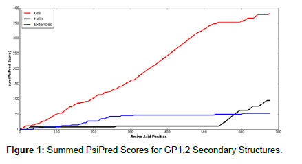 health-medical-informatics-Scores