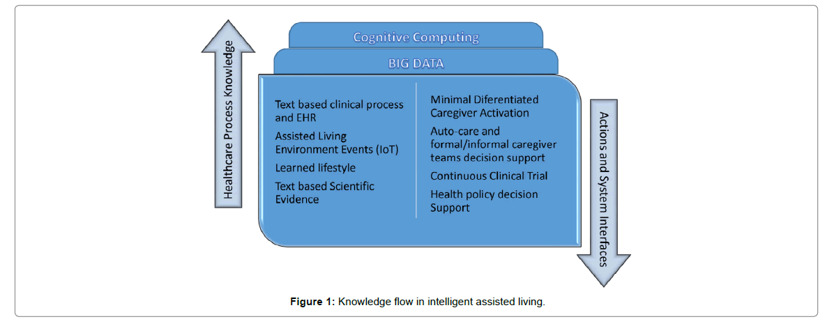 health-medical-informatics-flow-intelligent