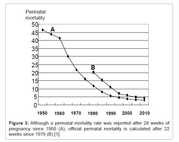 health-medical-informatics-perinatal-mortality