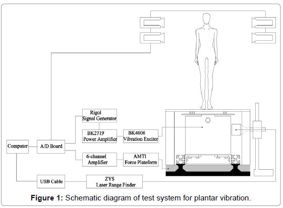 Effects of Plantar Vibratory Stimulation on Posture Control