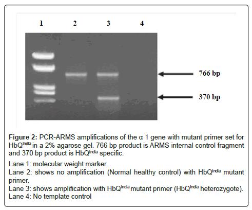 hereditary-genetics-amplification
