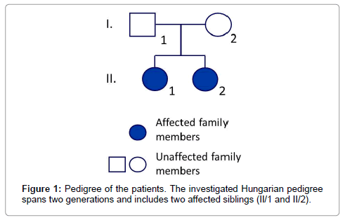 hereditary-genetics-investigated