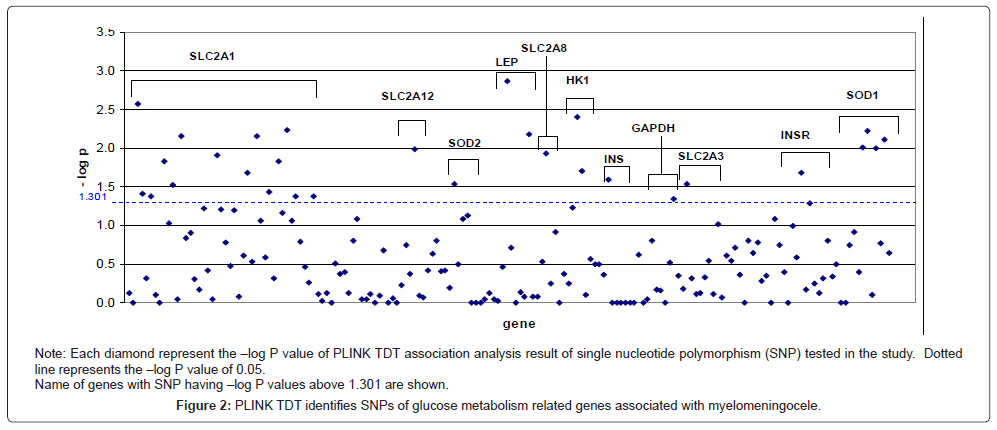 hereditary-genetics-metabolism