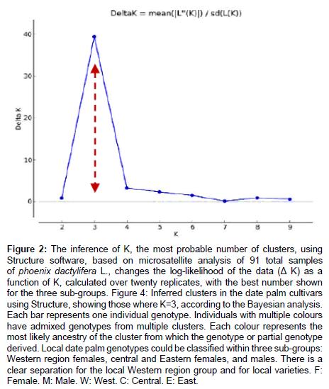 hereditary-genetics-microsatellite-analysis