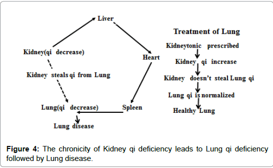 homeopathy-ayurvedic-medicine-Kidney-qi-deficiency
