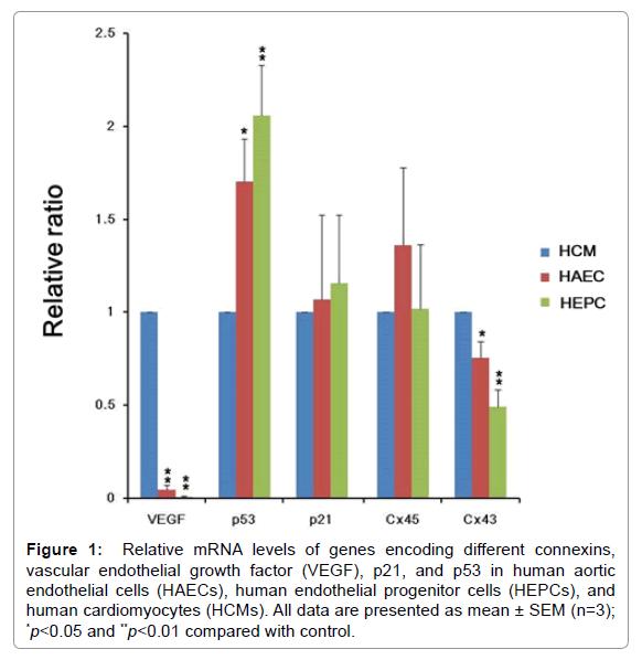 homeopathy-ayurvedic-medicine-mRNA-levels
