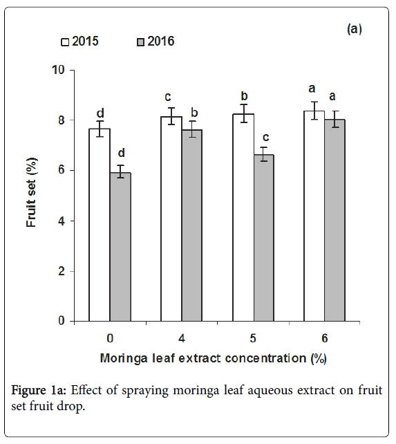 horticulture-spraying-moringa