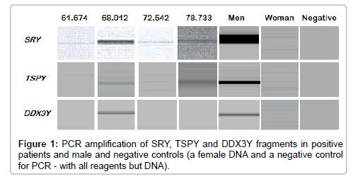 human-genetics-embryology-amplification