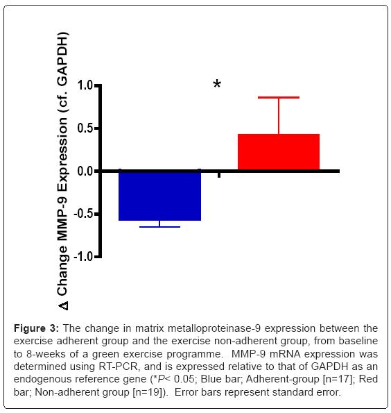 hypertension-matrix-metalloproteinase