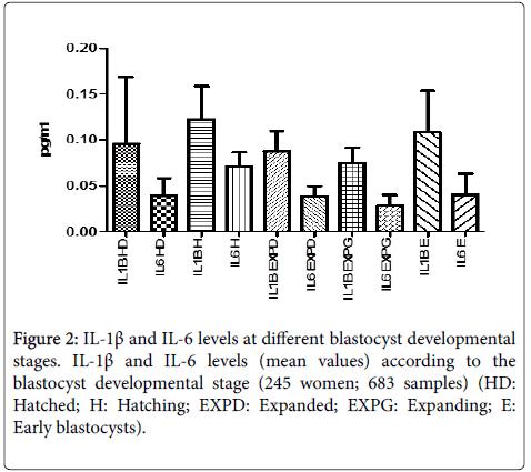 immunobiology-blastocyst-developmental