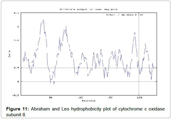 immunochemistry-immunopathology-Abraham-hydrophobicity-cytochrome