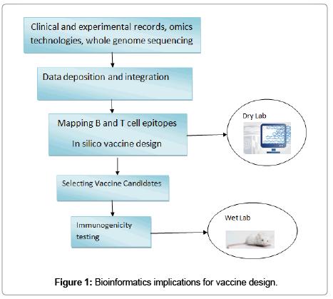 immunoinformatics-implications-vaccine-design