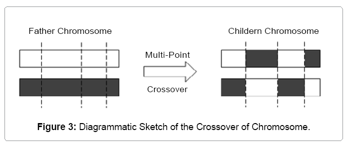 industrial-engineering-sketch-crossover-chromosome