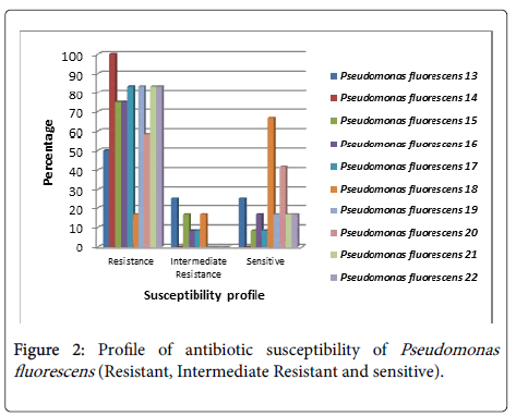 infectious-diseases-therapy-Profile-antibiotic-susceptibility
