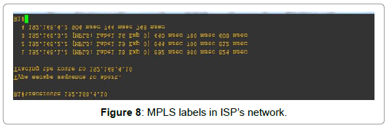 information-technology-software-engineering-mpls-labels-isp