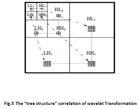 innovations-thoughts-ideas-tree-wavelet
