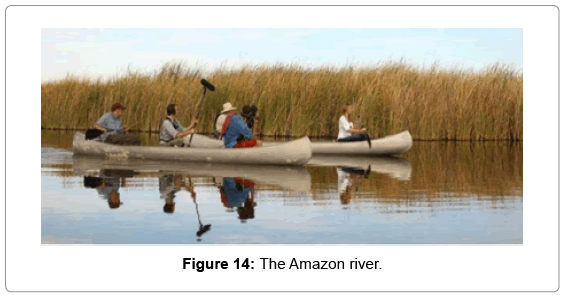 innovative-energy-policies-The-Amazon-river