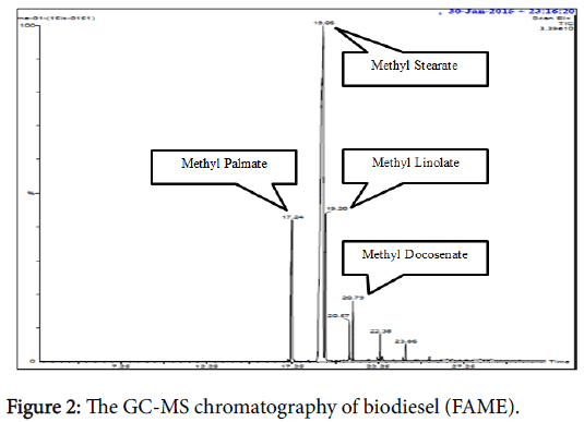 innovative-energy-policies-chromatography-biodiesel