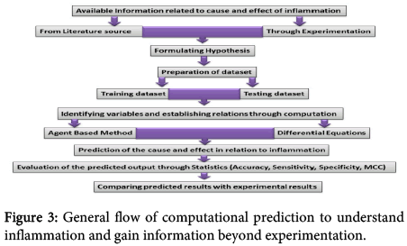 interdisciplinary-microinflammation-flow-computational-prediction