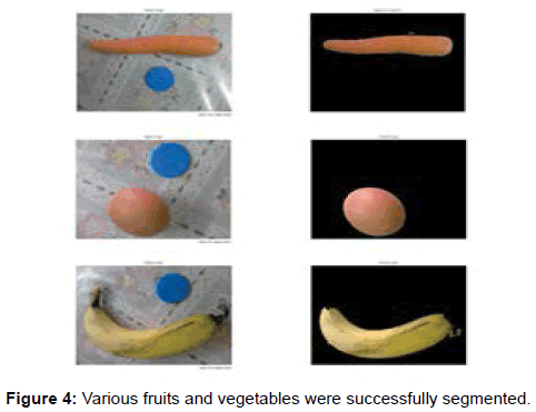 international-advancements-technology-fruits-vegetables-segmented