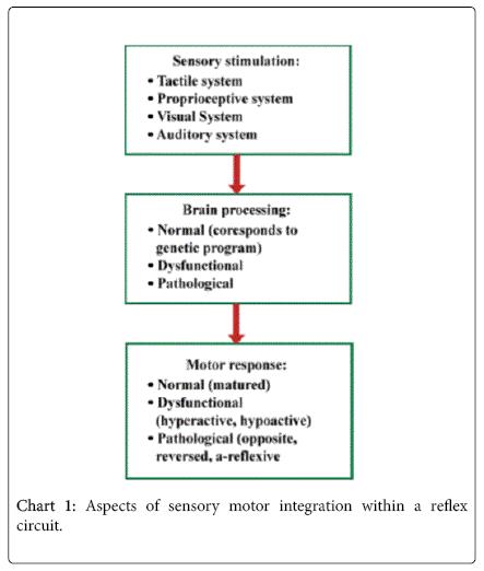 international-neurorehabilitation-sensory-motor-integration