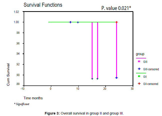 leukemia-Overall-survival-group