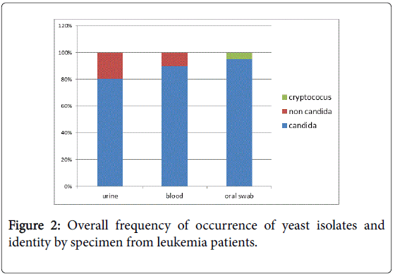leukemia-frequency-occurrence