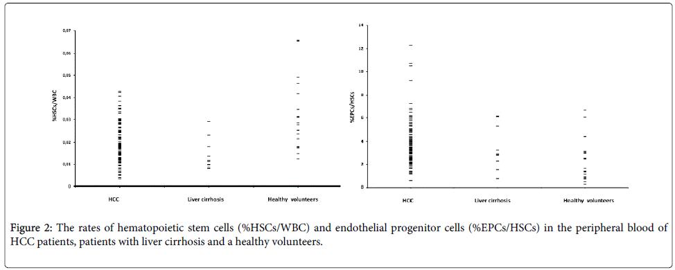 liver-hematopoietic-stem-cells