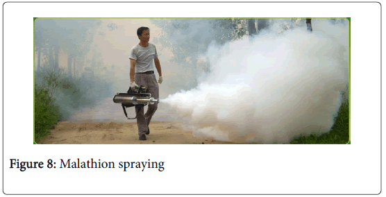 malaria-chemotherapy-control-Malathion-spraying