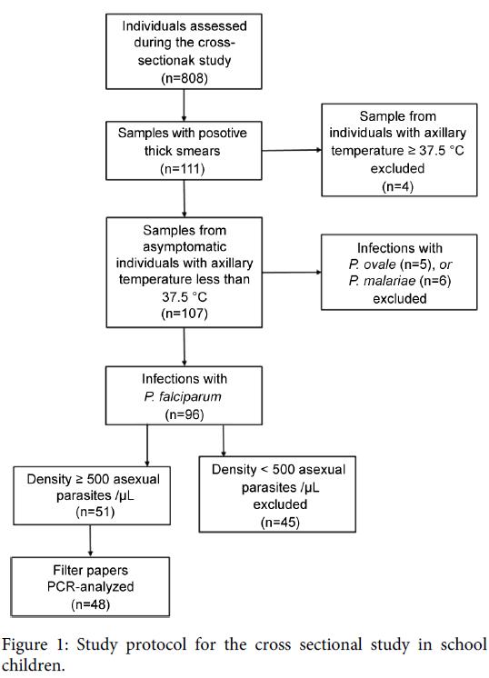 malaria-chemotherapy-control-elimination-protocol-sectional-school