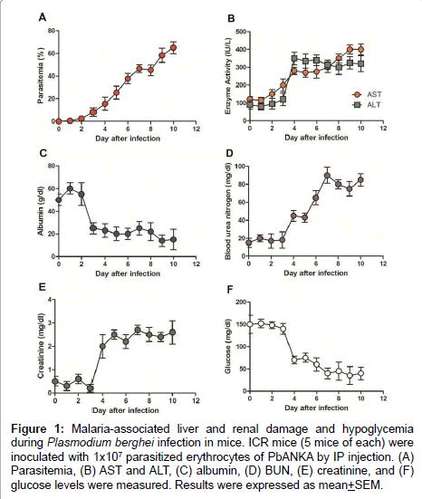 malaria-chemotherapy-control-glucose-levels