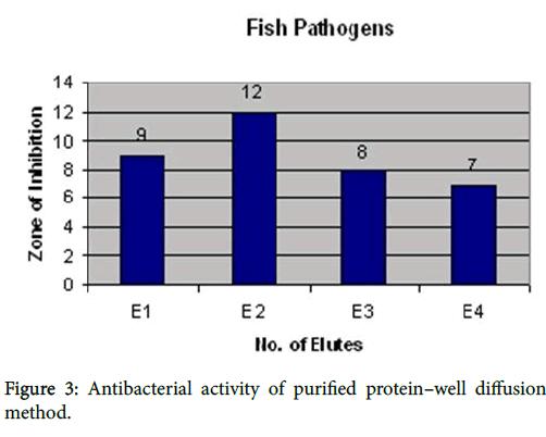 marine-science-research-Antibacterial-activity