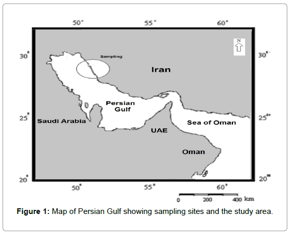 marine-science-research-Map-Persian-Gulf