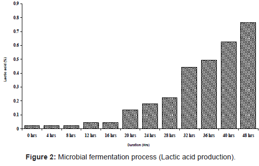 marine-science-research-Microbial-fermentation-process