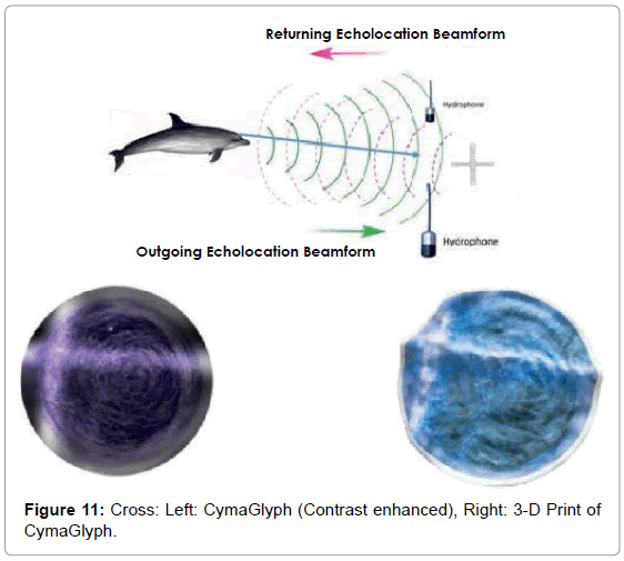 marine-science-research-development-Cross-Left-CymaGlyph