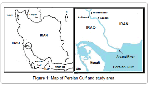marine-science-research-development-Persian-Gulf