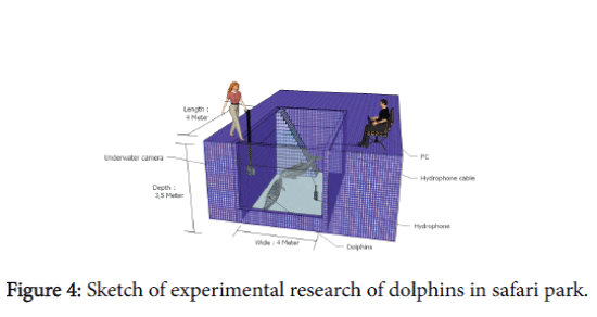 marine-science-research-development-experimental-research