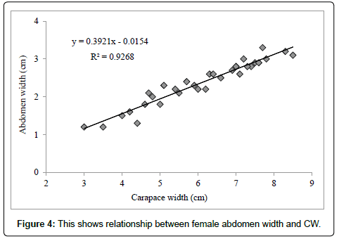 marine-science-research-development-female-abdomen