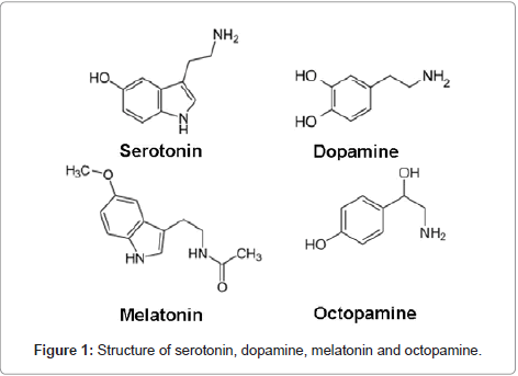 marine-science-research-development-serotonin-dopamine