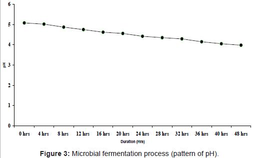 marine-science-research-fermentation-process
