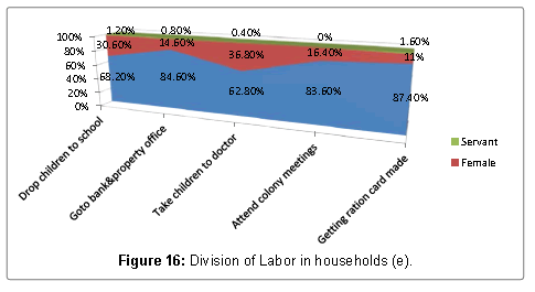 mass-communication-journalism-division-labor-households