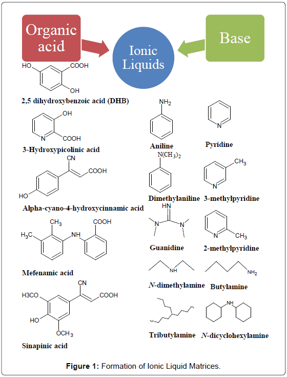 mass-spectrometry-purification-techniques-Formation-Ionic-Liquid