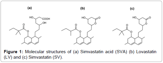 mass-spectrometry-purification-techniques-Molecular-structures-Simvastatin