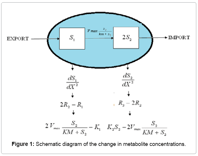 material-science-metabolite-concentrations