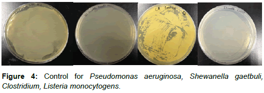 material-sciences-engineering-control-pseudomonas-listeria