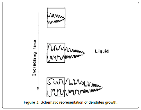 material-sciences-engineering-dendrites