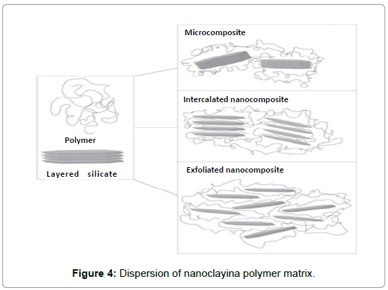 material-sciences-engineering-dispersion-polymer-matrix