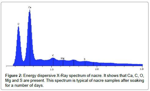 material-sciences-engineering-energy-dispersive