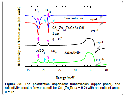 material-sciences-engineering-polarization-dependent-transmission